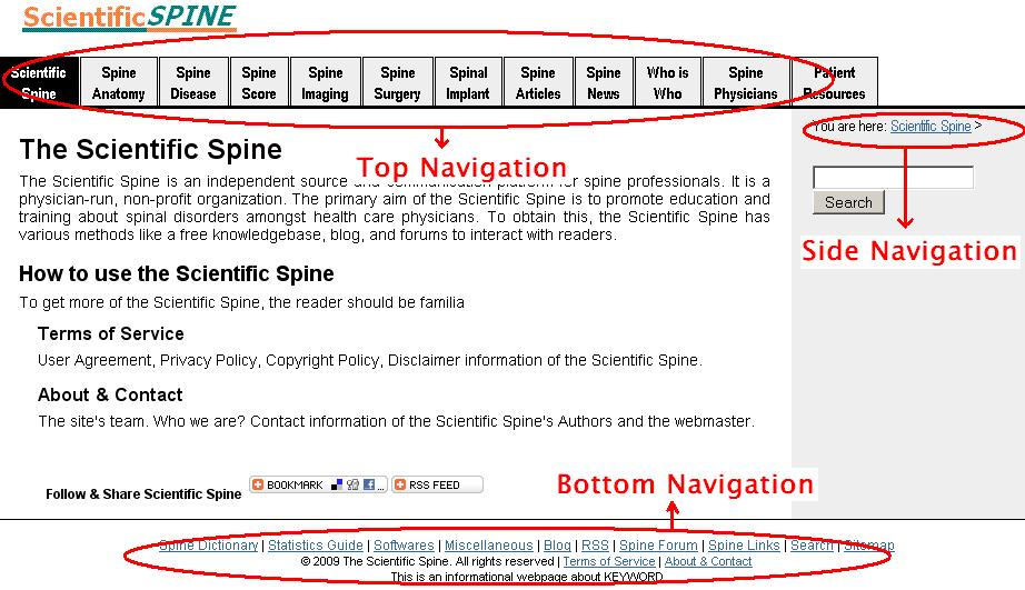 Scientific Spine Navigation Image